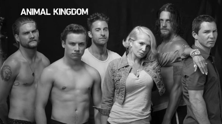 serie animal kingdom temporada 3