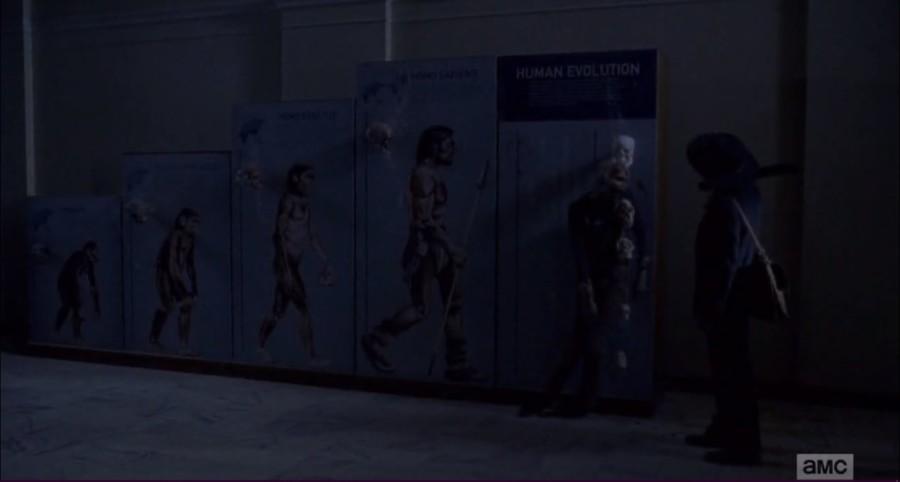 the walking dead homo sapiens evolucion involucion