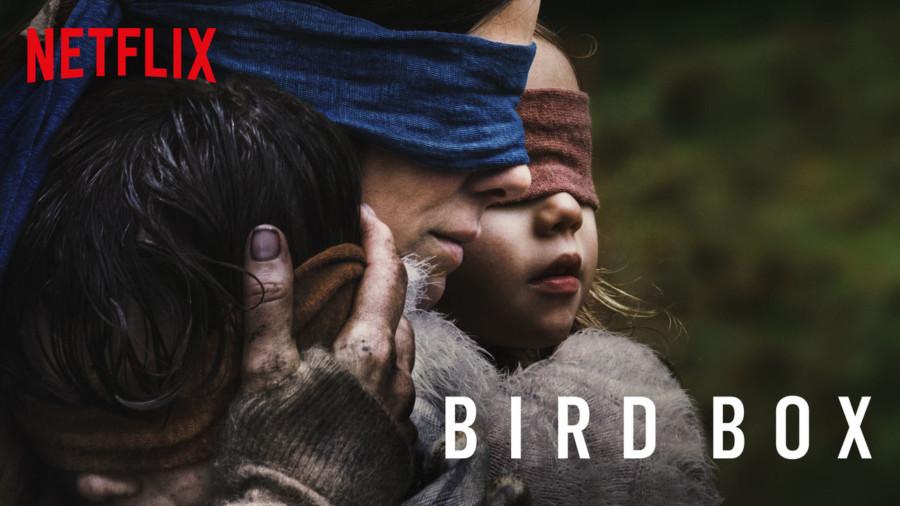 películas más vistas de netflix 2019