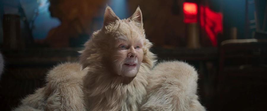 judy dench cats